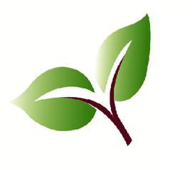 Kraki Logo