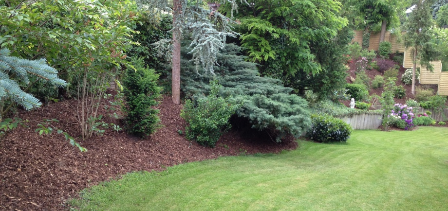 Gartenpflege & Gartengestaltung Ditzingen